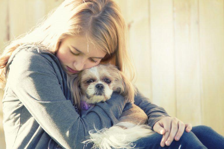 hugging pet